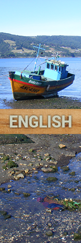 Visit this website in English